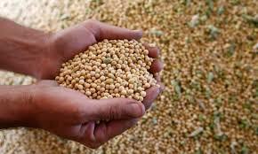 特朗普要求中国解除对美国农产品的关税