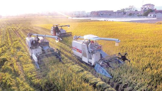 家庭农场破产在中西部上游州上升