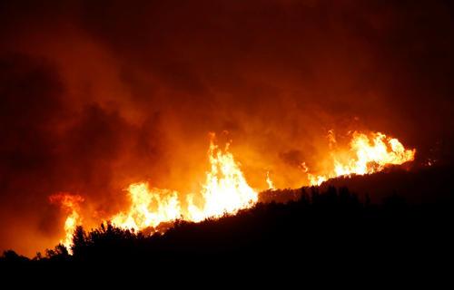 PG&E卷轴作为投资者评估其在加州野火中的作用