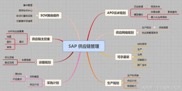 SAP表示要重组业务 设定长期指导