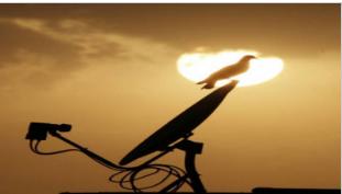 据Bharti Airtel收购公司Singtel报道 Dish TV上涨了8%