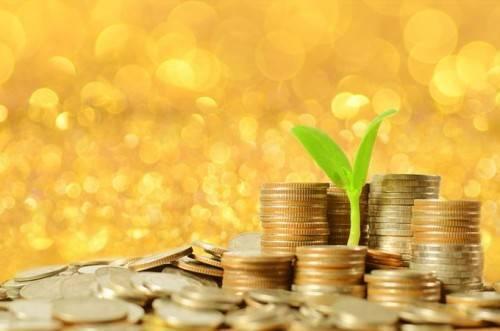 真实的金融素养始于质疑传统的财务建议