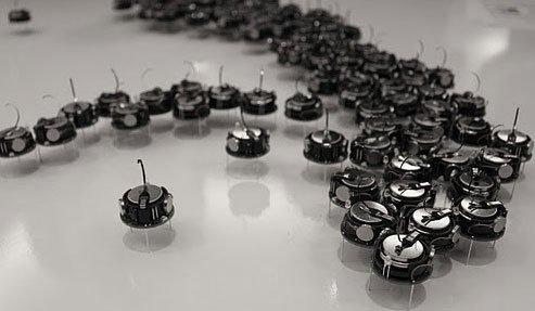 一种群体机器人方法受到微生物中观察到的行为的启发