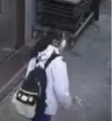 广东一名13岁少女刚走过小巷 身后发生恐怖一幕监控拍下(图)