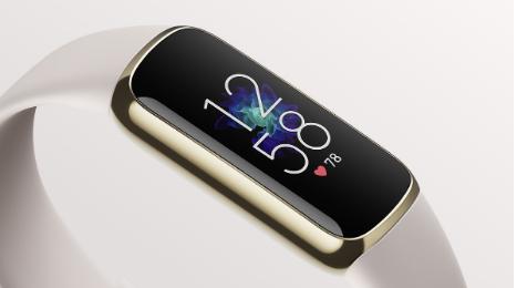 Fitbit的新型高端豪华追踪器已可预订